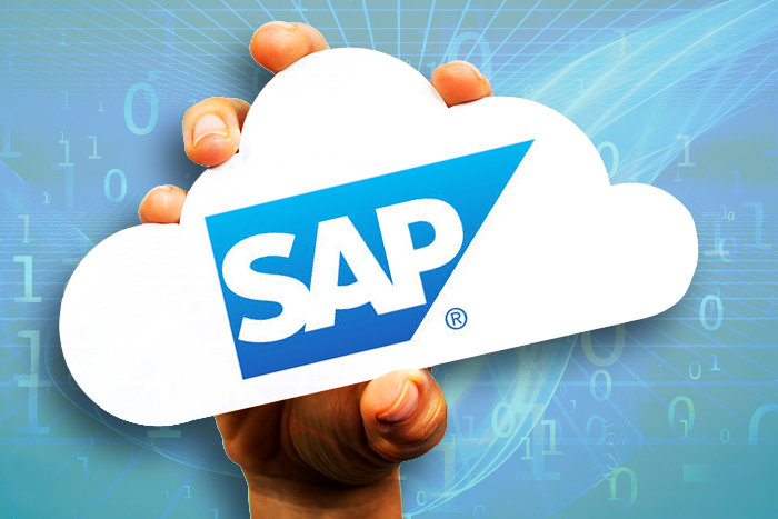 SAP Application & Hosting